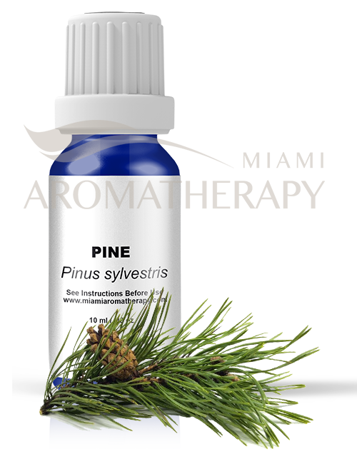 Image of Pine Essential Oil